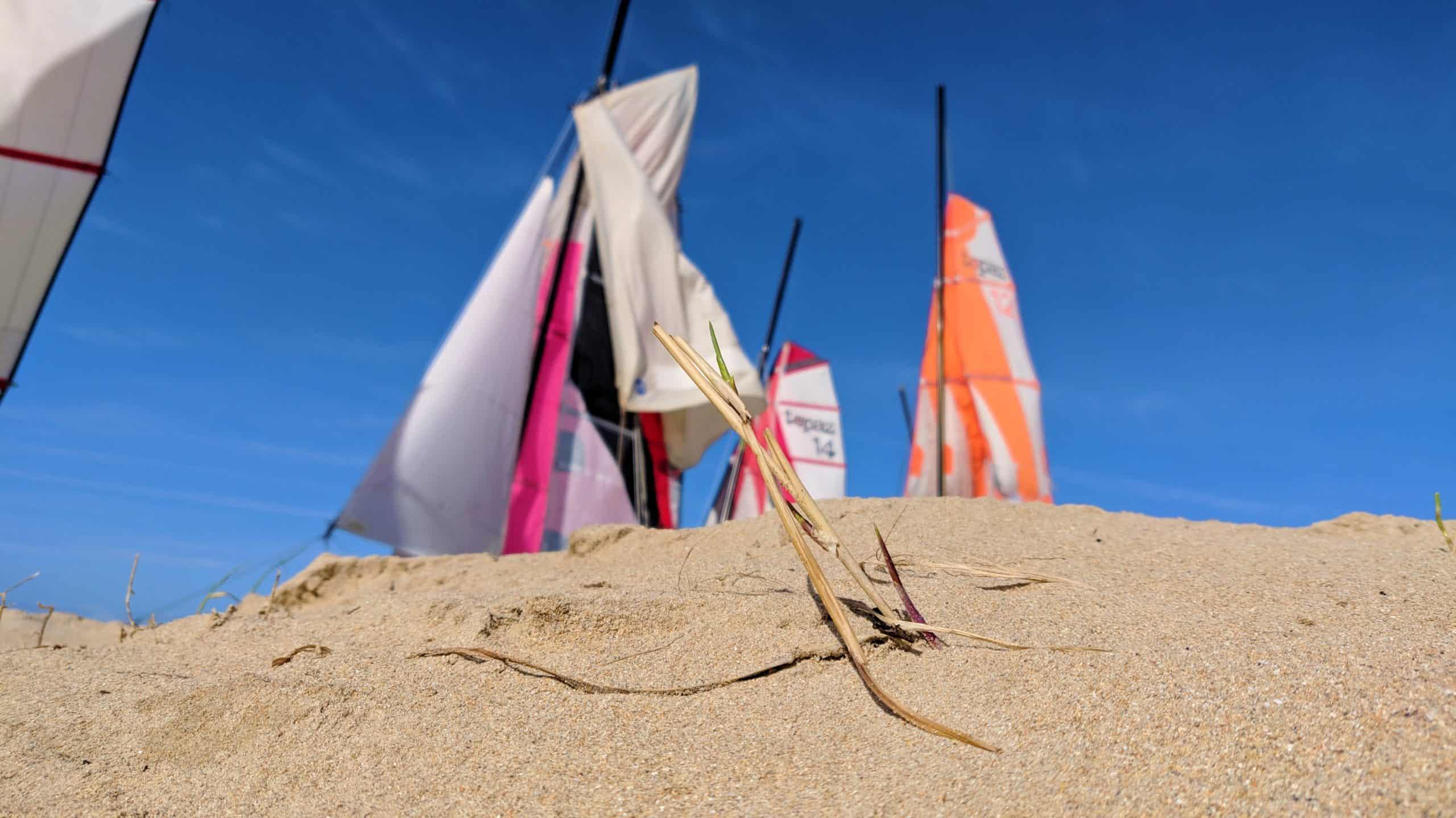 Dune de Barbâtre